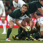 SARU sign seven new Springbok contracts