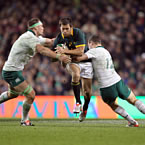 Springboks confirm six home Tests in 2016