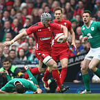Wales lose Jonathan Davies for Rugby World Cup