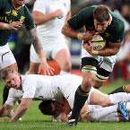 Alberts : Springboks aiming for an unbeaten year